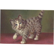 Adorable Vintage Swiss signed A Lampe Postcard, Gorgeous kitten