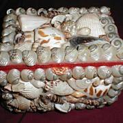 REDUCED Collectible Vintage Shell Box, Souvenir
