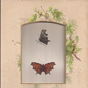 REDUCED Colored Plate MORRIS Butterfly Book, COMMA, Photo Album Mat