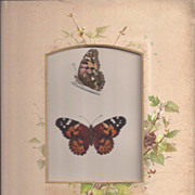 REDUCED Colored Plate MORRIS Butterfly Book, PAINTED LADY, Photo Album Mat