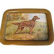 Vintage c. 1940 Metal Tray, OLE LARSEN A.C. & Co. Irish Setter