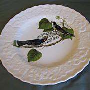 "SOLD Lovely Alfred Meakin Audubon 9"" Plate KINGBIRD"