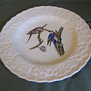 "Lovely Alfred Meakin Audubon 9"" Plate PASSENGER PIGEON"
