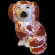 19th Century Staffordshire Single Dog (Spaniel) Red & White