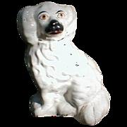 19.C White Staffordshire Dog (Spaniel), Painted Eyes
