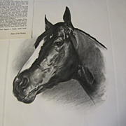 SOLD Print of C.W. Ernst Drawing of VENETIAN WAY 1960 Kentucky Derby Winner