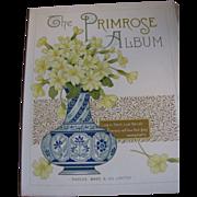 SALE Lovely Victorian Photograph Album, The PRIMROSE Album