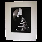 SOLD Art Photograph by Otha Spencer, Macro Sea Shells