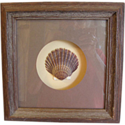 SALE Rustic Shadow Box Frame with Shell