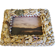 REDUCED Vintage SeaShell Photograph Frame