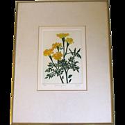 SALE Attractive Numbered Framed Print, MARIGOLDS, Heffner