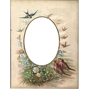 SALE Lovely Colored Page from Victorian Photograph Album, Flowers and Birds
