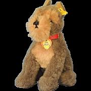 "Steiff ""Cosy Schnauz"" Schnauzer Dog Plush Vintage Toy  Tags"