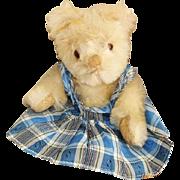 Adorable 8 inch Farnell Twyford Teddy Bear - Dinkins