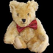 Sweet 14 inch 1930's Farnell Teddy Bear - Gordy