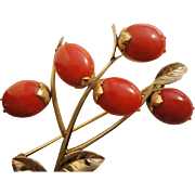 SALE Large 18K Yellow Gold Red Mediterranean Coral Berries Brooch Pin C1950s