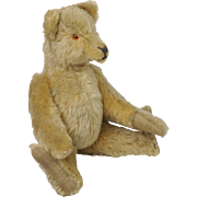 "Edwardian Teddy Bear Small 11"" Jointed Long Snout Curved Arms Hump Back German C 1915"