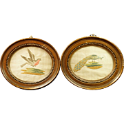 Georgian Silkwork Embroidery Pair Miniature Birds Circa 1780s