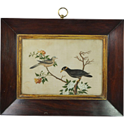 Georgian Chinese Bird Painting On Pith Rice Paper Georgian Rosewood Frame Circa 1820 Gorgeous