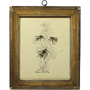 Antique Pen and Ink Drawing Bumble Bees Charming Circa 1850