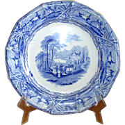 English Blue & White Ironstone Transfer-Ware Plate