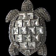SCARCE Whiteside & Black Sea Turtle Brooch