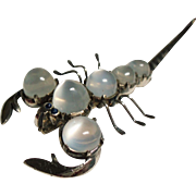 Antique Cabochon Moonstone Scorpion Sterling Figural Brooch