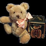 SALE JACKIE STEIFF TEDDY BEAR ORIGINAL NOT REPLICA WITH CELEBRATION BROCHURE EXCEPTIONALLY RAR