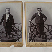 2 Antique Victorian Small Cabinet Cards-Each with One Young Boy on Tree Trunk-Hamburg ...