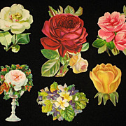 Six Victorian Roses and/or Floral Scraps