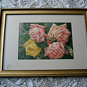 Antique Roses Print Pink Yellow Cabbage Roses Victor Dangon Chromolithograph Rose Flower Flora