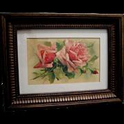 c1890s Pink Roses Print Catherine Klein Chromolithograph Postcard Floral Flower Rose