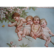 SOLD Frances Brundage Babies Butterfly Apple Blossoms Print Chromolithograph c1890s Child Chil