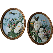 SOLD Two Rose Print s  Paul de Longpre Roses Butterflies Oval Gold Frame s Vintage - Red Tag S