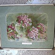 c1890 Violets Print Stumm Chromolithograph Antique Victorian
