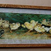 c1902 Battle of the Chicks Yard Long Print Ben Austrian