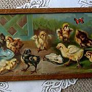 c1905 Chick Yard Long Print Van Vredenburgh Chromolithograph Chicken Butterfly