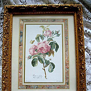 Roses Print Redoute Gold Leaf Gilt Frame Fancy Gesso Butterfly Bee