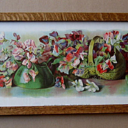 c1900 Sweet Peas Yard Long Print Allen Chromolithograph