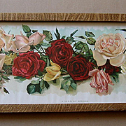 c1901 Cabbage Roses Yard Long Print Wells Chromolithograph Rose Flower Floral