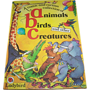 SALE Children's Brightly Illustrated Book A comic and curious collection of animals , birds an