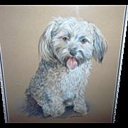 SALE Framed Puppy Dog Portrait Artist Signed Gainsborough Galleries