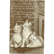 SOLD Sweet Vintage Post Card Featuring Little White Kitty Cats & Poem Prince Pub Co.