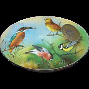 SALE Advertising Carr's Biscuit Ornithology BIRD WATCHING TIN British Birding
