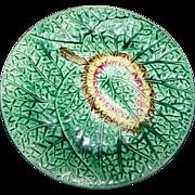 Fine Victorian Era Decorative Majolica Begonia Leaf Plate 8 1/2 Inches