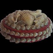 Sea Shell Souvenir Box,  French  C.1920's