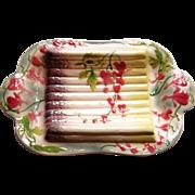 "15""  Majolica Asparagus Platter - St. Clements - Xlnt!"