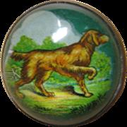 Horse Bridle Rosette Pin - Hunting Dog - Golden Retriever