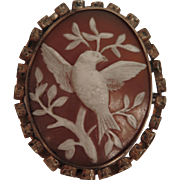 Antique Bird Cameo Brooch of Carved Shell