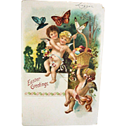 Vintage EMBOSSED Easter Basket and Babies Postcard - Antique easter Post Card